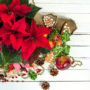 A top view of a holiday spread including a red poinsettia, pinecones, holly leaves and berries, apples, and beads.